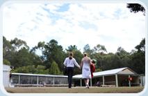 Sokil wedding